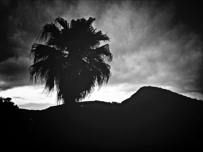 Blackandwhite Nature Mountains Eye4photography