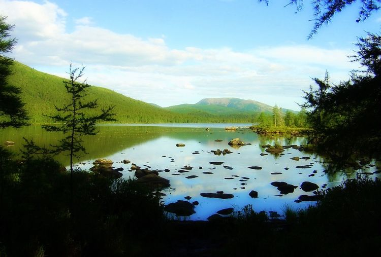 Camping Canada Conifer  Distant Gaspesie Hiking Lake Lakeshore Light Majestic Mont Albert Mountain Nature Outdoors Pond Quebec Reflection Remote Rural Scenes Standing Water Stepping Stones Tranquil Scene Tranquility Tree Water And Sky