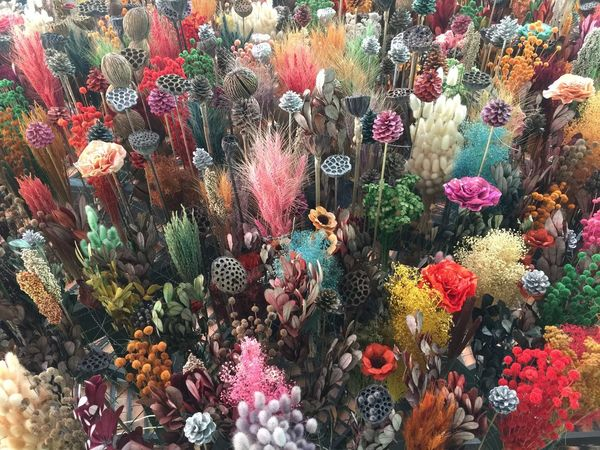 Full Frame Backgrounds Multi Colored No People Flowering Plant Flower For Sale High Angle View Outdoors Vulnerability  Abundance Plant Choice Freshness Day Market Variation Retail  Fragility Nature