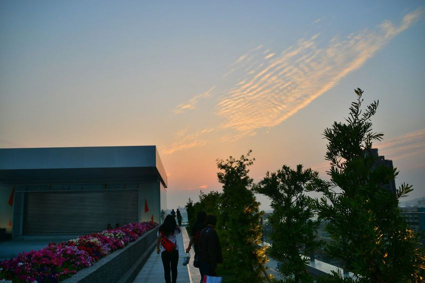 Sunset The New Library Of Kaoshiung 高雄市立圖書館總館 Kaoshiung