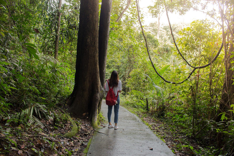 Tree Full Length Only Women Day Forest One Person Adults Only KaoyaiOne Woman Only Walking Nature Adult Outdoors Growth Tree Trunk Standing Women One Young Woman Only Real People Young Women Lost In The Landscape Travel Photography Thailand_allshots Thailandtravel EyeEmNewHere