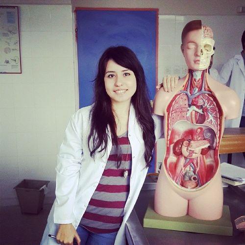 Anatomi Yeniarkadaş Instacollege Uygulamadersi