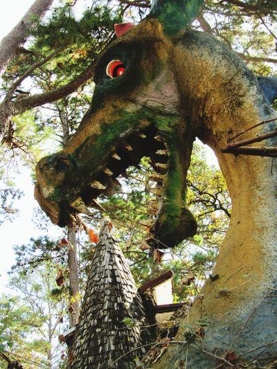 Dragon Tower Close-up