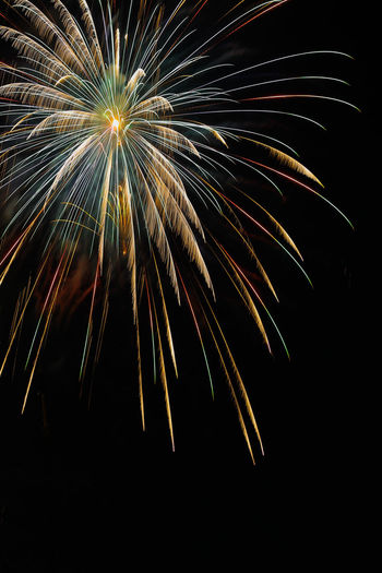 Low angle view of firework against clear sky at night