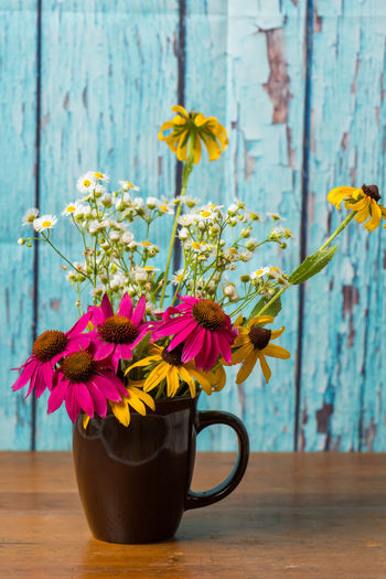 Bouquet of flowers in a coffee cup Chamomile Daisy Rustic Turquoise Colored Background Beauty In Nature Black Eyed Susans Bouquet Bouquet Of Flowers Coffee Cup Cone Flower Cup Echinacea Flower Flower Arrangement Flowers Peeled Paint Plant Vintage Yellow