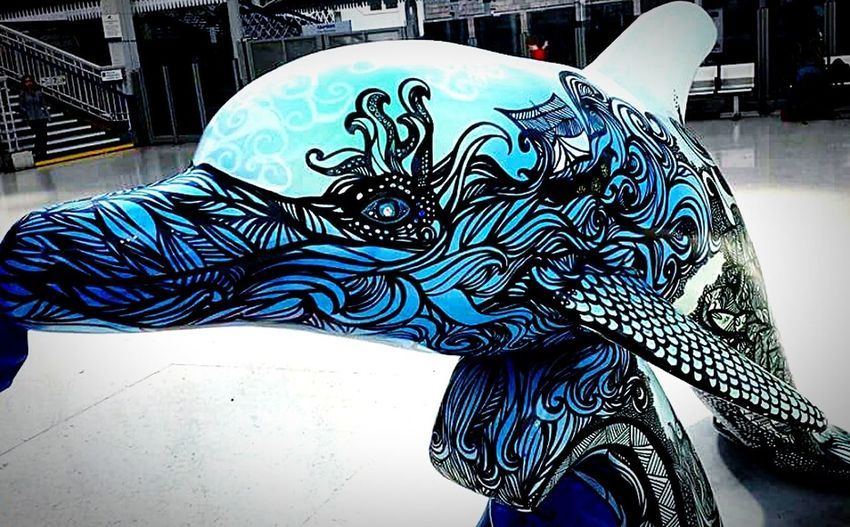 Dolphin Fun Art Statue Check This Out Blue Dolphin 