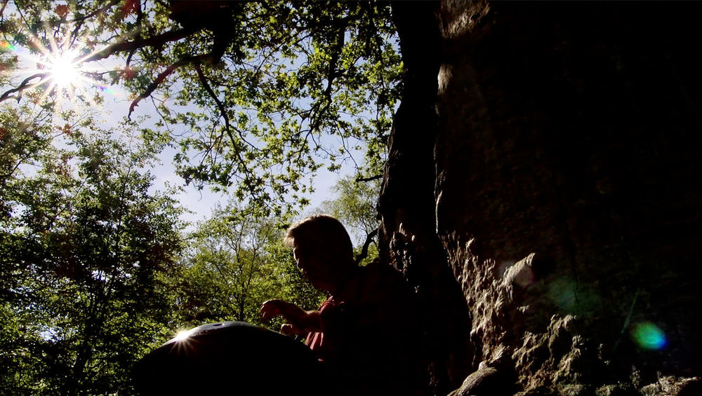 Stills from the Video Footage Adult Beauty In Nature Day Forest Hang Low Angle View Man Music Musician Nature Oak Tree Old Tree Outdoors People Playing Music Outside Real People Sky Sun Tree Video Still