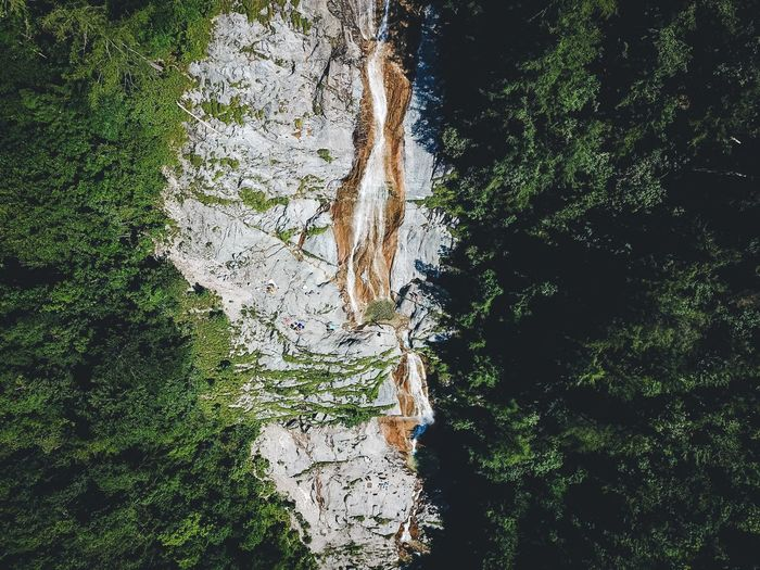Nature Tree No People Forest Tree Trunk Day Tranquility Beauty In Nature Green Color Outdoors Scenics Königssee Berchtesgadener Land  Lost In The Landscape Connected By Travel Beauty In Nature Waterfalls EyeEm Gallery Nature Hiking Berchtesgaden Waterfall Adventure Green Color Panoramic Perspectives On Nature The Great Outdoors - 2018 EyeEm Awards