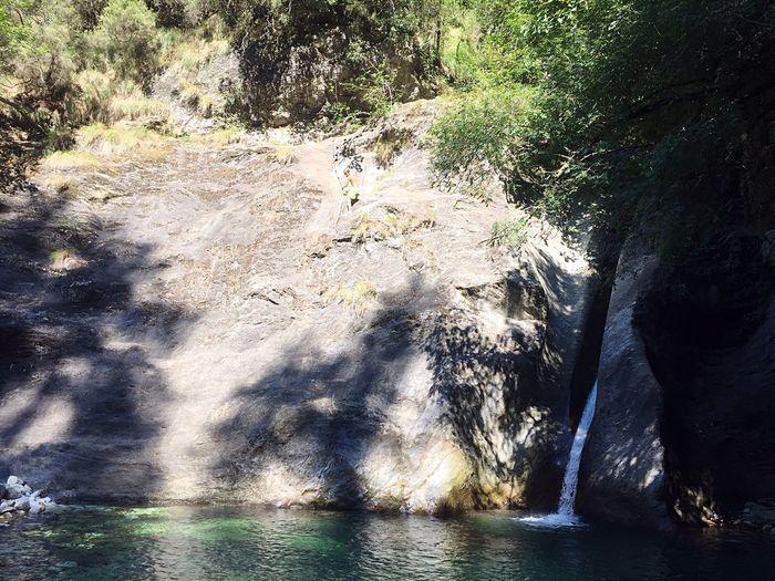 Polledimalbacco EyeEm Nature Lover Photonature  Photography Nature Tuscany Italy EyeEm Best Shots - Nature