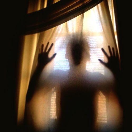 Solitude Domestic Life Indoors  Window Window Frame