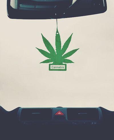 Marijuana HotBox  Cannabis Car