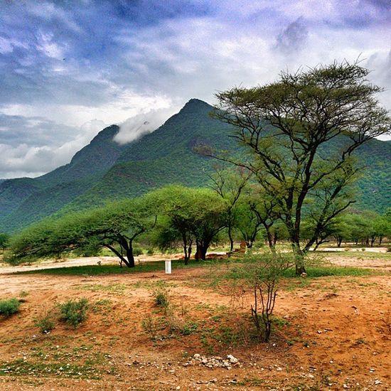 My Tanzania Traveller Ruaha Igersdar Igtanzania Discover255 Seetanzania Skyhunter Mzalendo MyTanzania