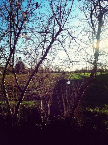 fortunata a vivere in un posto così. Lovethelife. Landscape