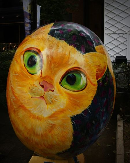 Hanging Out Taking Photos Enjoying Life Check This Out Relaxing Shanghai Cat Paintedegg