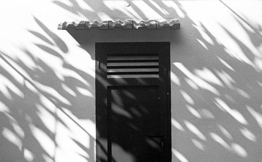 'Fanned Light'