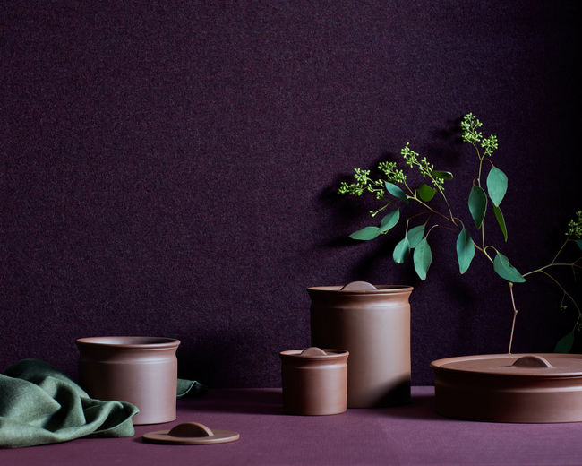 Close-up of potted plant on table against black background