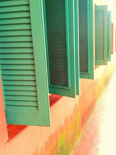 Windows Houses And Windows Windows Green