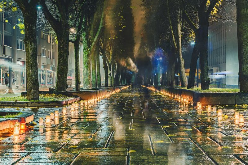 All Souls' Day in Kaunas, Lithuania Illuminated Street City Night Building Exterior Tree Outdoors Architecture Wet City Life People Cityscape Candles Long Exposure Street Life Lietuva Religion