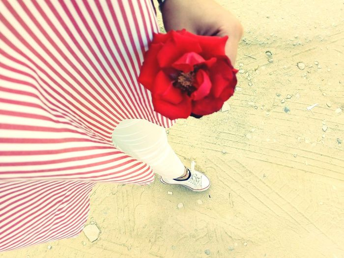 EyeEm Selects EyeEm Ready   AI Now! Red Flower White Color Red Color Sand Converse 5ol5al Me Memories ❤ Red One Person Human Body Part Adult People Adults Only One Man Only Human Leg Real People Close-up