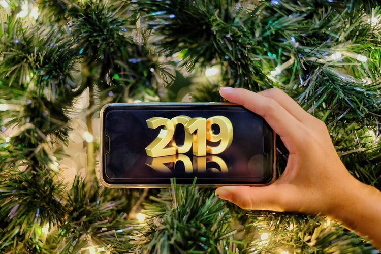 Happy New Years New Year 2019 Christmas Decoration Christmas Lights christmas tree Christmas Ornament Christmastime Human Hand Tree Palm Tree Photography Themes Communication Close-up Plant Grass Christmas Present Santa Claus Unwrapping Fir Tree Decorating The Christmas Tree Christmas Stocking Christmas Market Christmas Fairy Lights Christmas Bauble