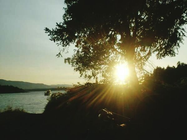 Sunshine Gabriola Relaxing Taking Photos Naturelover Beautiful Nature Pretty Beautiful BC Sunset
