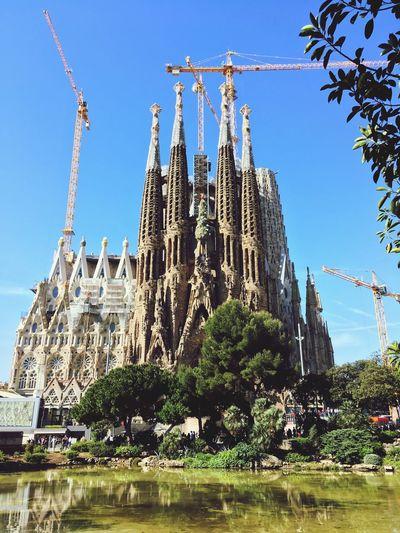 Sagrada Família Basilica Barcelona, Spain Barcelona Built Structure Architecture Sky Building Exterior Plant Religion Belief