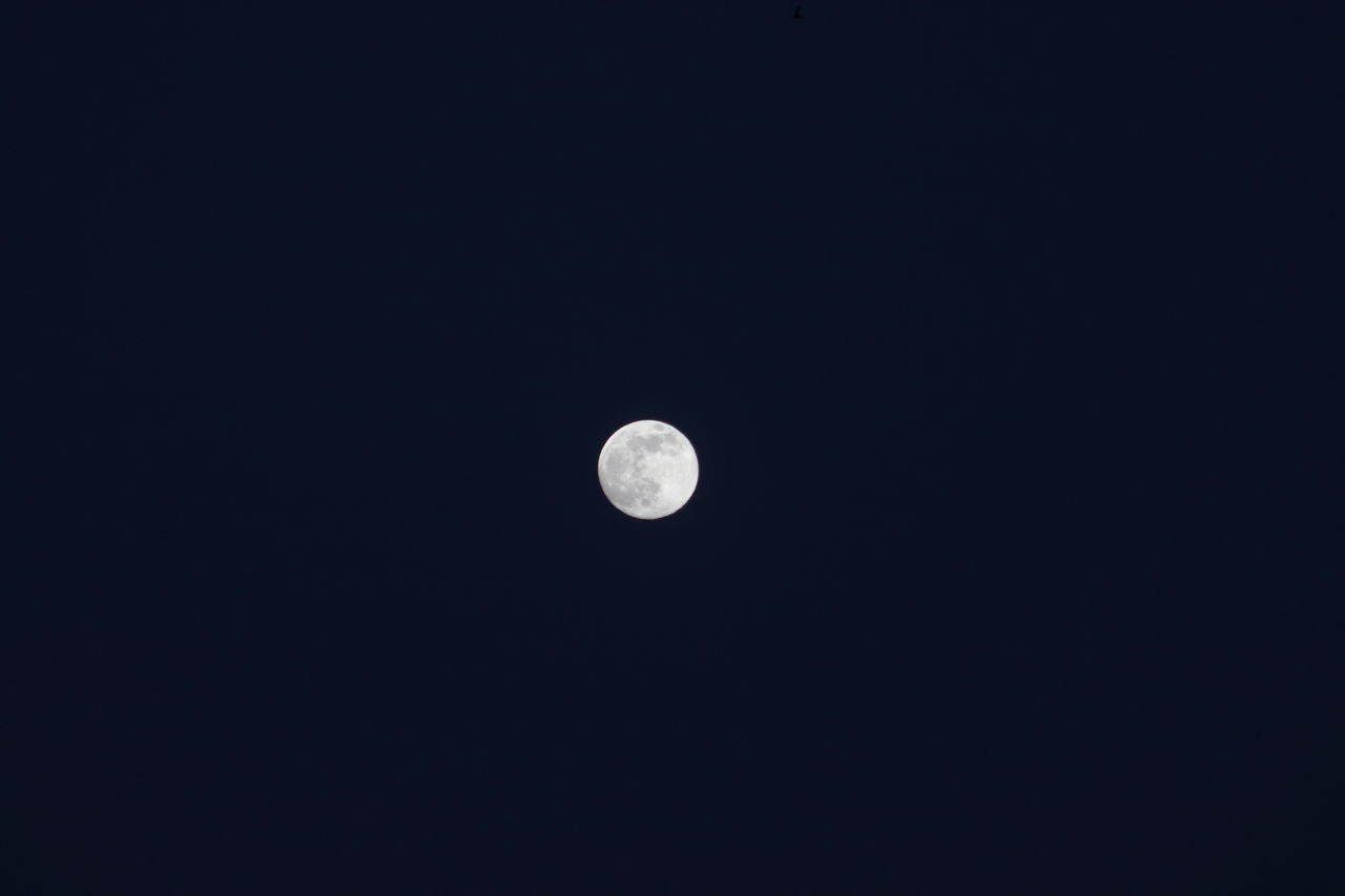 moon, astronomy, copy space, nature, planetary moon, beauty in nature, scenics, tranquil scene, moon surface, night, tranquility, no people, low angle view, half moon, outdoors, clear sky, space exploration, space, crescent, sky