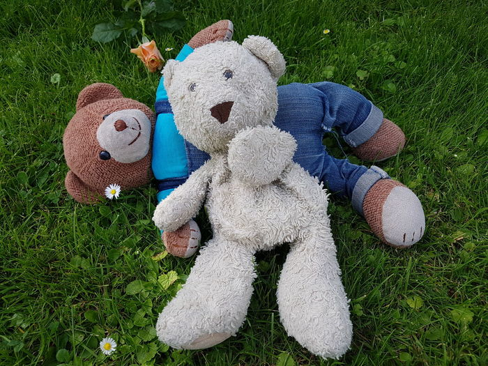 High angle view of teddy bears on grassy field