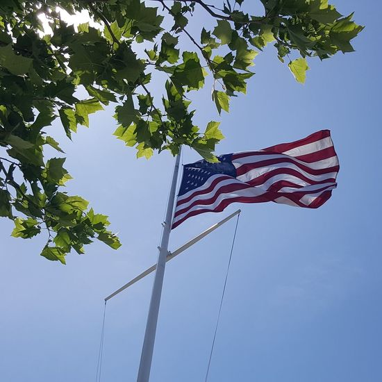 Happy 4th of July and a happy 20th birthday to my son! #WashingtonDC #americanflag #fourthofjuly #independenceday Tree Patriotism Flag Cultures Blue Striped Sky Stars And Stripes Symbolism