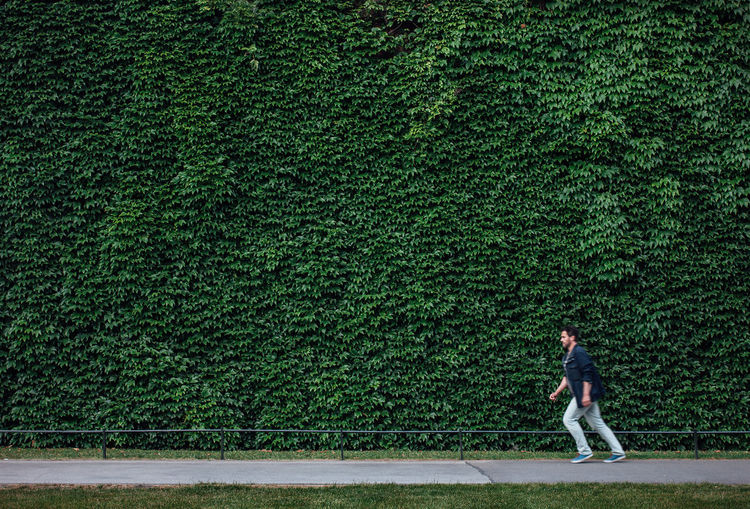 Small People: Little Man walking, falling, in front of a green large wall Adult Adults Only Copy Space Day Full Length Funny Green Green Color Large London Men Nature Nature One Man Only One Person Only Men Outdoors People Posion Ivy Posionivy Small Small People Walking Wall