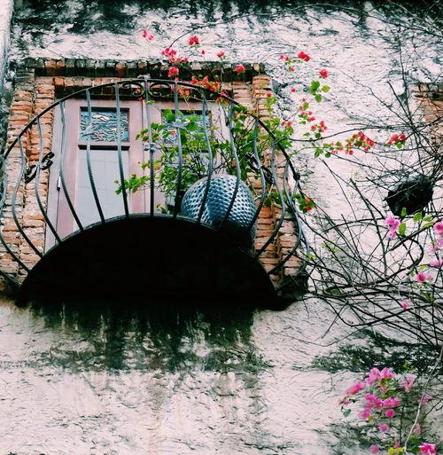 Ngày cũ đi qua... tình ta trôi xa... Bridge - Man Made Structure Built Structure Day Architecture Outdoors No People Water Nature Tree first eyeem photo EyeEmNewHere