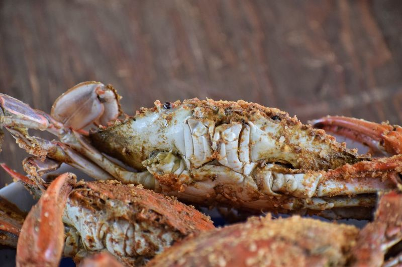 Seafood Crab One Animal Crustacean Animal Themes No People Sea Life Close-up Lobster Prawn Animals In The Wild Food Indoors  Day Freshness Nature UnderSea Maryland Chesapeake Bay Summer Summertime Live For The Story