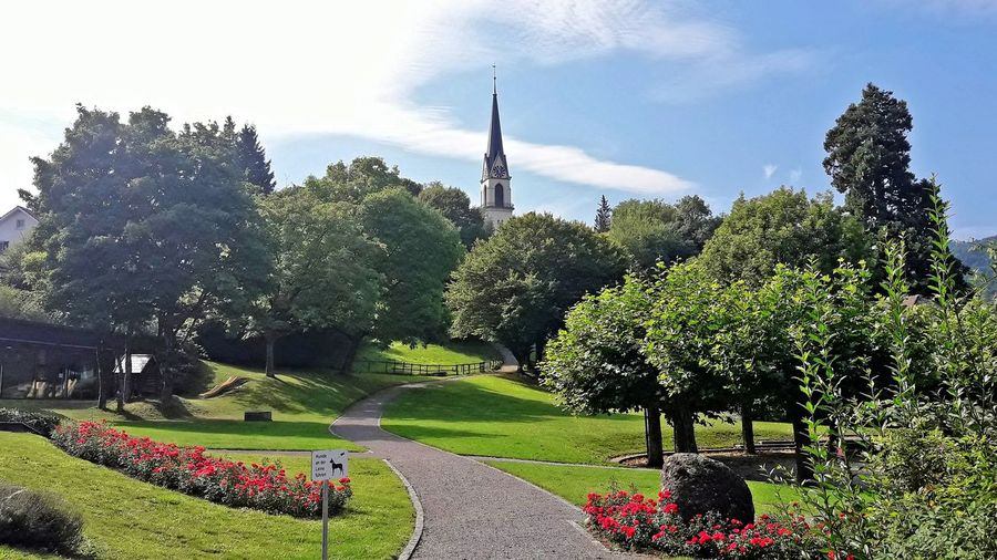 Park by the church Church Adliswil Beauty In Nature Day Flower Grass Green Color Nature Outdoors Park - Man Made Space Plant Sky Tree