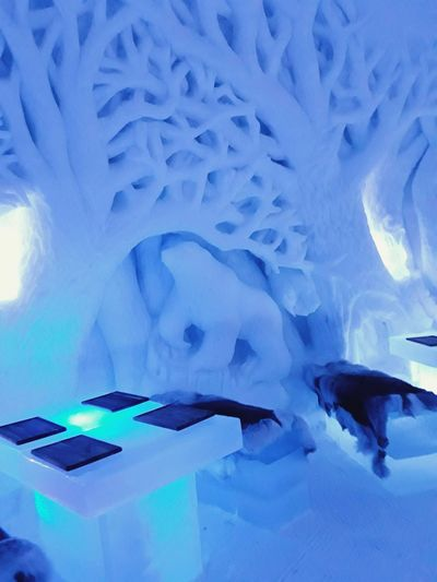 Winter fantasy Bear Magical Place Winter_collection Norway Beauty Nightspot Winter Wonderland Ice Hotel Crafted Beauty Frozen Cool Travel Locations Lighting Effects Ice Art Cool Places Travel And Tourism Shades Of Blue Ice Table Ice Seats Illumination Light And Shadow Blue No People Close-up Indoors  Nature Art And Craft Creativity Pattern Backgrounds Abstract Cold Temperature