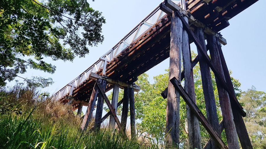 Old railway bridge Atherton Tablelands Atherton Tablelands Renewed Cycleway Bridge Timber History Relic Yesteryear  Railroad Track Bridge - Man Made Structure Tree Sky Green Color Deterioration Damaged Run-down Rusty Weathered