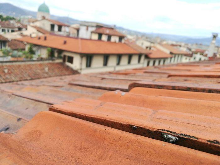 Pisa roof top