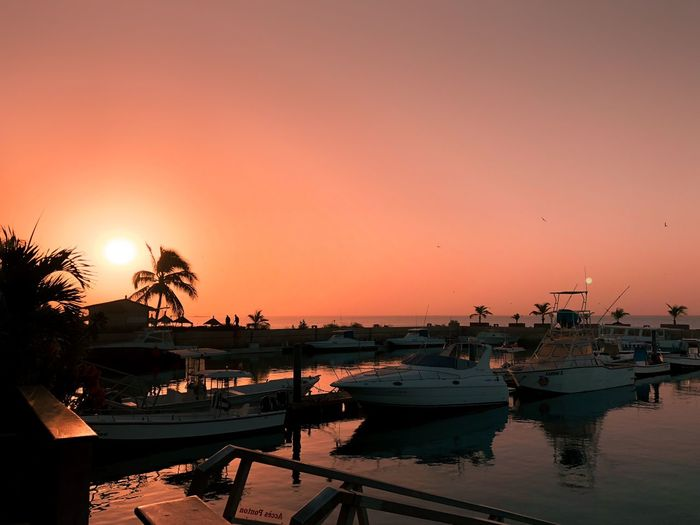 Sunset Sea Water Nautical Vessel Palm Tree Beach Orange Color Clear Sky Reflection Vacations Mode Of Transport Harbor Sky Nature Beauty In Nature Scenics