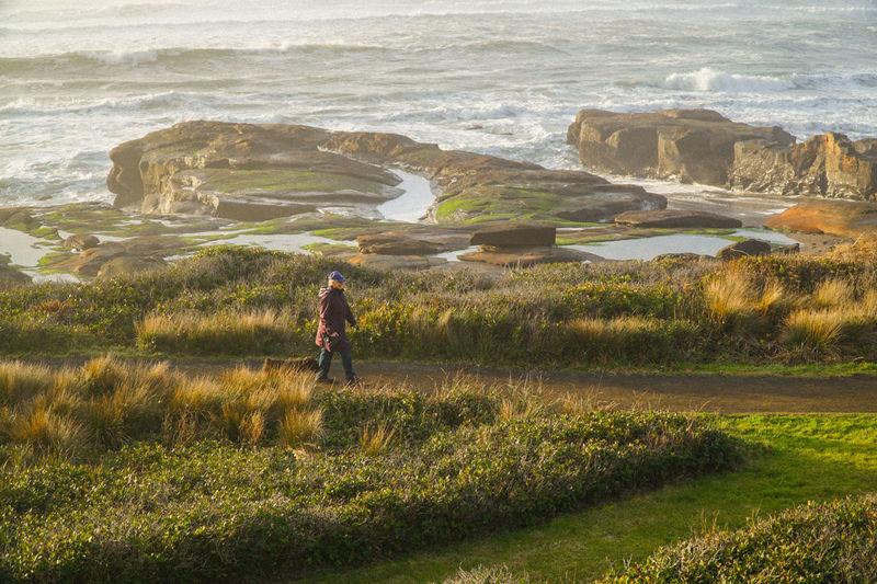 Man With Dog Walking On Seaside