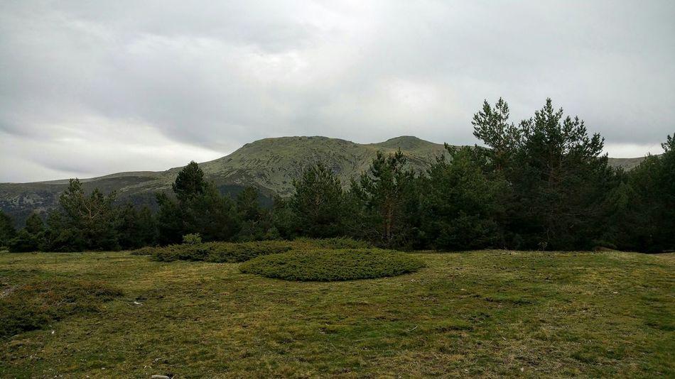 Cabeza de Hierro Madrid Sierra De Guadarrama Rascafría