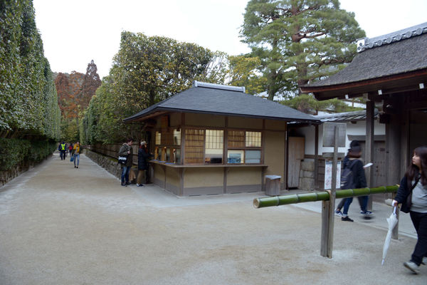 Kyoto, Japan Adult Architecture Building Building Exterior Built Structure City Day Footpath Group Of People Incidental People Men Nature Outdoors People Plant Real People Sky Tree Walking Women