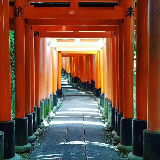 Holiday Travel Photography Travel Destinations Travel Road TORII Torii Gate Red Gate Red Kyoto Full Frame Fushimi Inari Shrine Japanese Temple Japan No People Outdoors Architecture