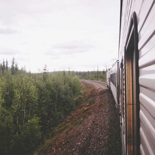 Train to Kiruna Railroad Track Railway on the move Sweden Lapland All Aboard Wagon  Train Sky Nature Transportation Day Cloud - Sky No People Train Rail Transportation Outdoors The Way Forward Landscape Direction Growth Mode Of Transportation Built Structure Field Tree Land