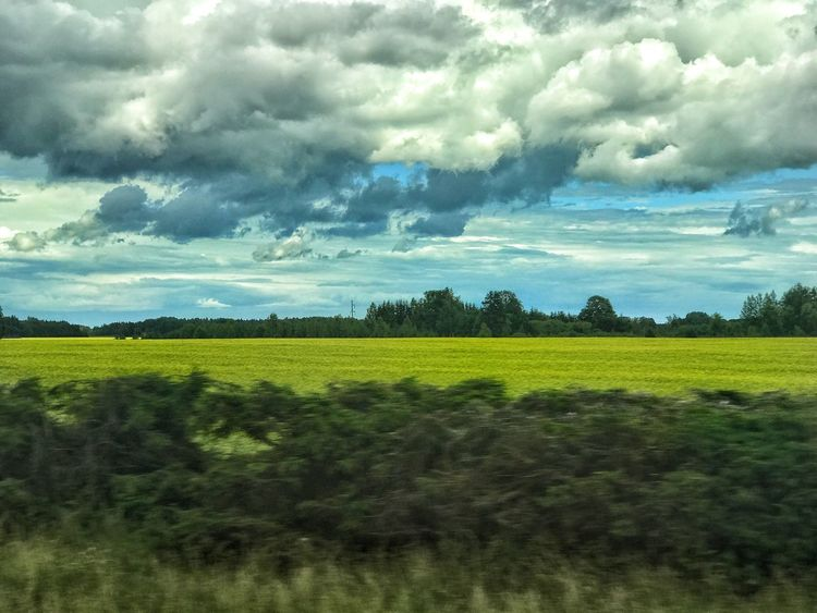 EyeEmNewHere On the move Field Agriculture Cloud - Sky Nature Beauty In Nature Landscape Tranquil Scene Sky Tranquility Scenics No People Grass Rural Scene Tree Green Color Day Growth Outdoors
