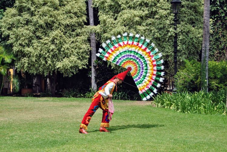 Side view of man with multi colored umbrella against trees