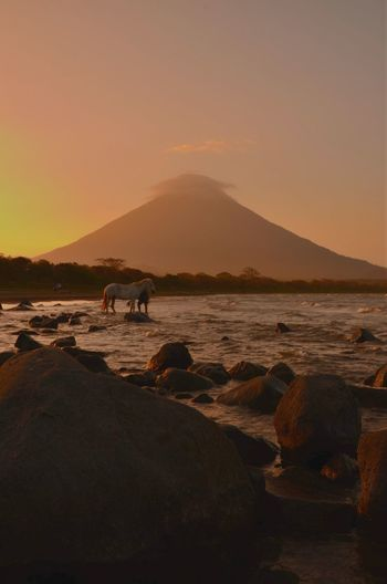 Ometepe Ometepe Island Island Volcano Volcanoes Landscape Sky Eco Tourism Horse Scenic Scenic View View Sunset Horsebackriding  Mountain Wilderness Scenics Nature Animal Wildlife Mammal Animal Nicaragua Beach Sunny Travel Miles Away Connected By Travel Lost In The Landscape