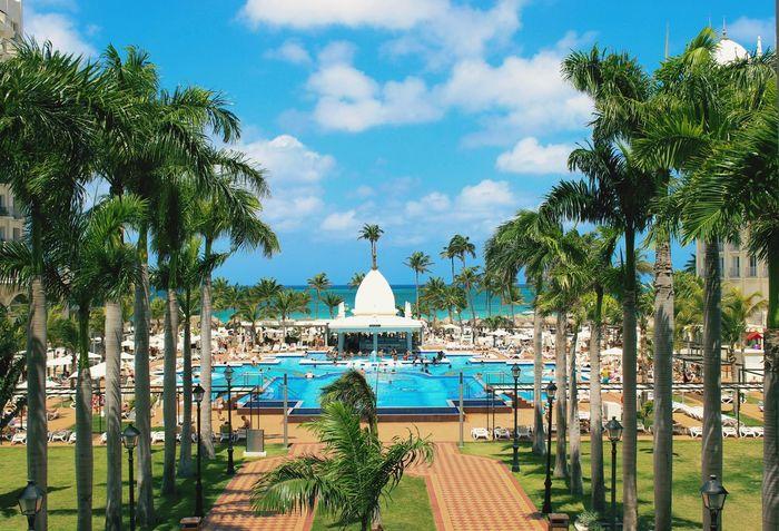 Aruba Riu Hotel Riu Palace Vacation Summer Sunny Green Trees Beach Pool Water Scenary Landscape Beautiful Breathtaking The Great Outdoors - 2017 EyeEm Awards