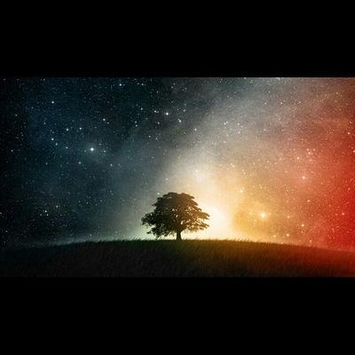 Two sides of the galaxy there's earth and there space. Twosides Tree Nature Galaxy Orange Black SunSet