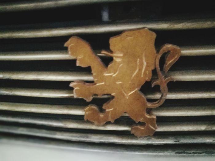 CAR LOGO 48 Close-up Indoors  No People Food Day Car Logos Car Logo Love To Take Photos ❤