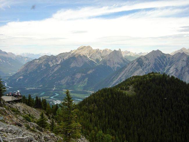 Banff  Banff National Park  Beauty In Nature Mountain Mountain Peak Mountain Range Nature Outdoors Pine Tree Pine Woodland Travel Destinations Tree