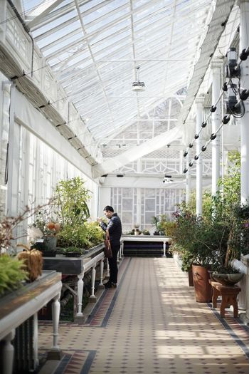 Side view of man working in greenhouse